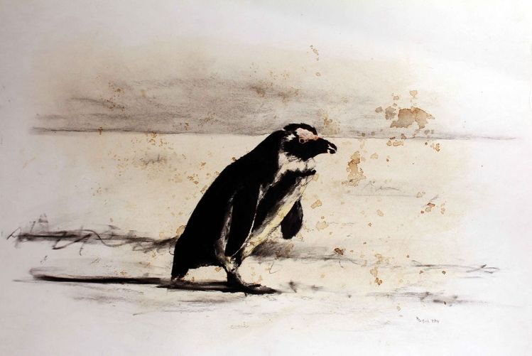 bild pinguin prinzip zoo leipzig von peter bei ert bei kunstnet. Black Bedroom Furniture Sets. Home Design Ideas