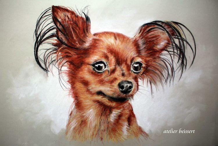 Hund, Ohr, Zeichnungen,