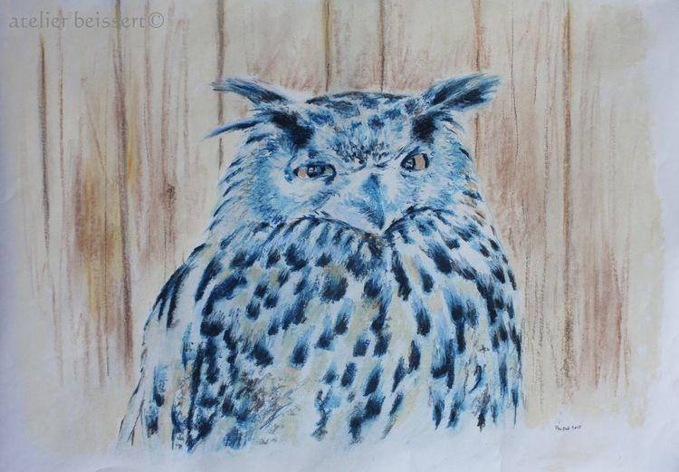 Eule, Vogel, Tiere, Zoo, Gehege, Zeichnungen