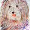 Hund, Portrait, Aquarellmalerei, Tiere