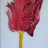 Rot, Blumen, Tulpen, Malerei