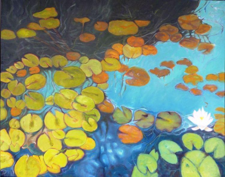 Teich, Blau, Pflanzen, Grün, Seerosen, Wasser