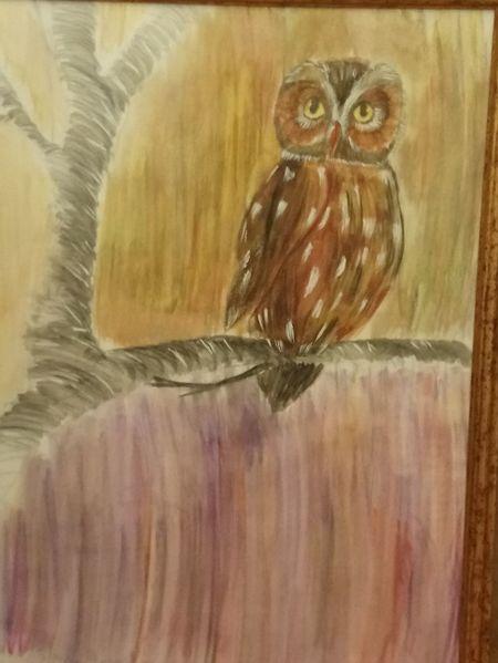 Kauz, Vogel, Wald, Malerei