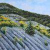 Ginster, Drome, Landschaft, Malerei