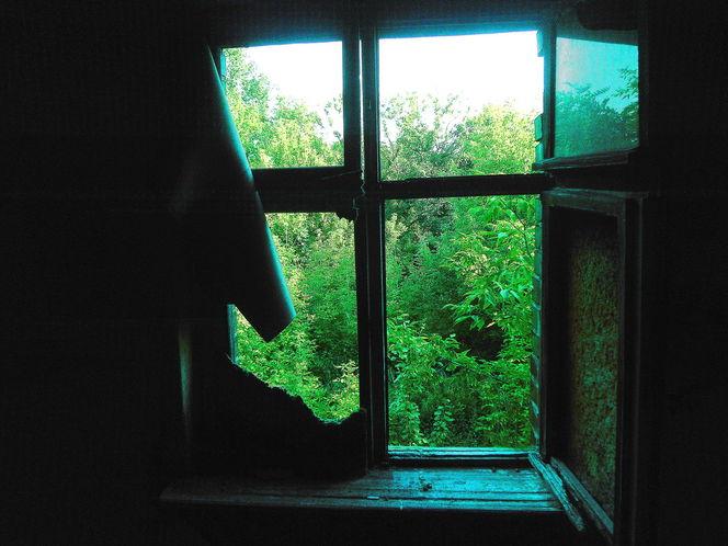Ruine, Outsider art, Fenster, Ruinenfenster, Türkis, Patina