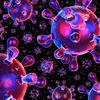 Transparenz, Viral, Sphärisch, Organismus