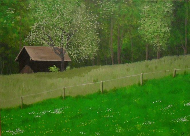Weide, Frühling, Zaun, Busch, Wald, Blumen