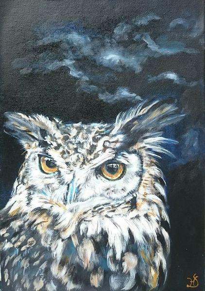 Eule, Uhu, Nachthimmel, Nacht, Malerei