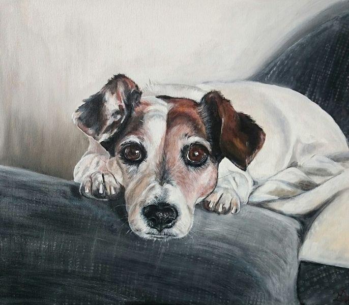 Jackrussel, Terrier, Hund, Portrait, Malerei, Alt