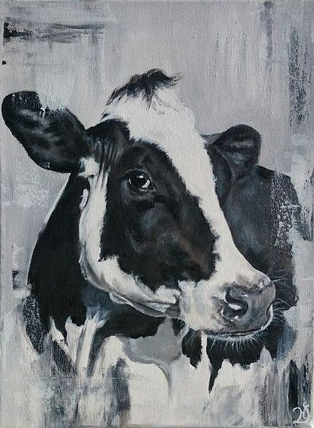 Weiß, Kuh, Rind, Milchkuh, Holsteiner, Schwarz
