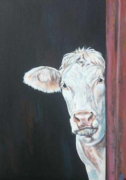 Rind, Weiß, Kuh, Malerei, Ecke,