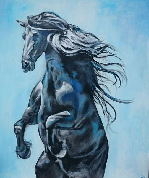 Steigendes pferd, Pferde, Friese, Blau, Himmel, Malerei