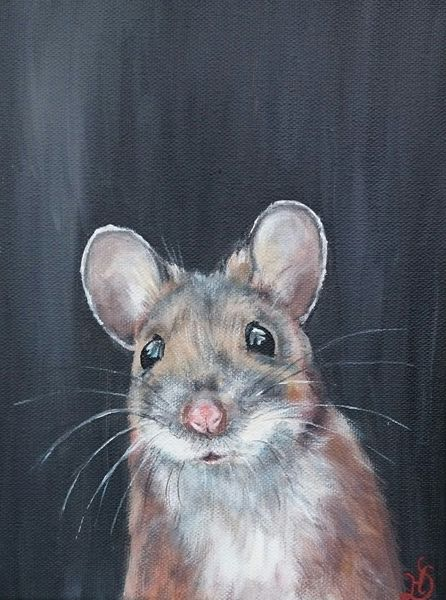 Maus, Portrait, Wald, Waldmaus, Nagetier, Malerei