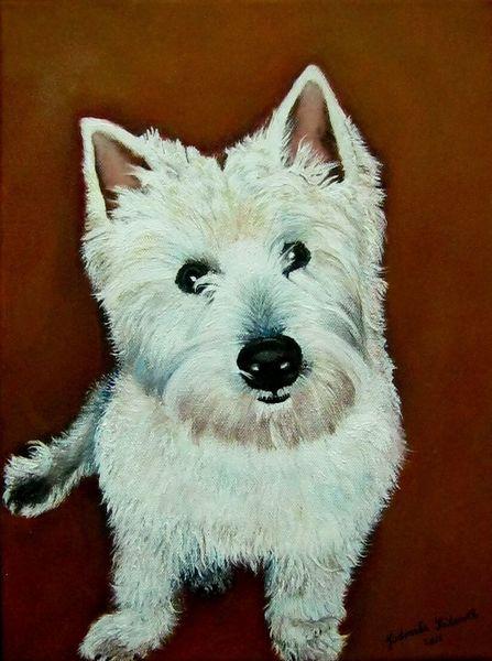 Weiß, Hund, Westi, Malerei, Tiere