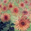 Sonnenblumen, Pflanzen, Malerei