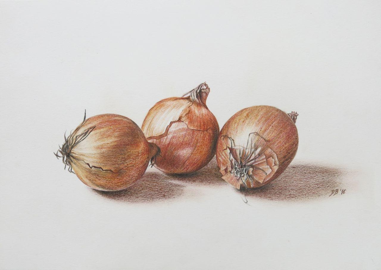 Gemüse - 128 Bilder und Ideen auf KunstNet   Stillleben, Obst und ...
