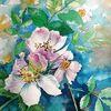 Natur, Zart, Frühling, Aquarellmalerei