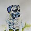 Aquarellmalerei, Paining, Auftragsarbeit, Tiere