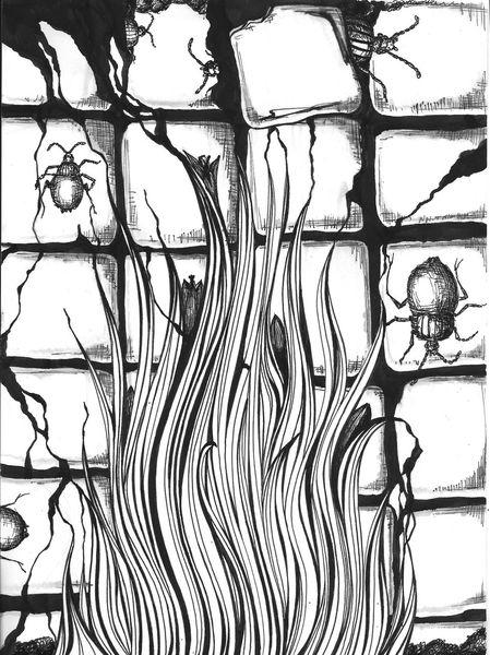 Kachel, Käfer, Schwarz weiß, Wand, Pflanzen, Mischtechnik