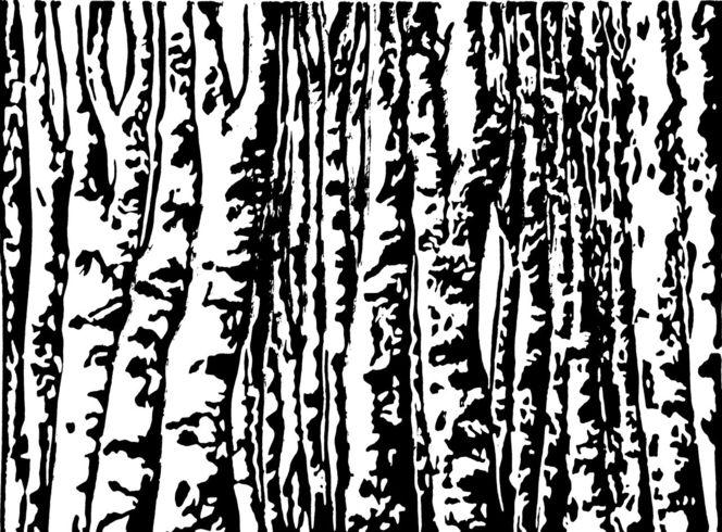 Wald, Hochdruck, Druckgrafik, Linolschnitt, Birken, Birkenwald
