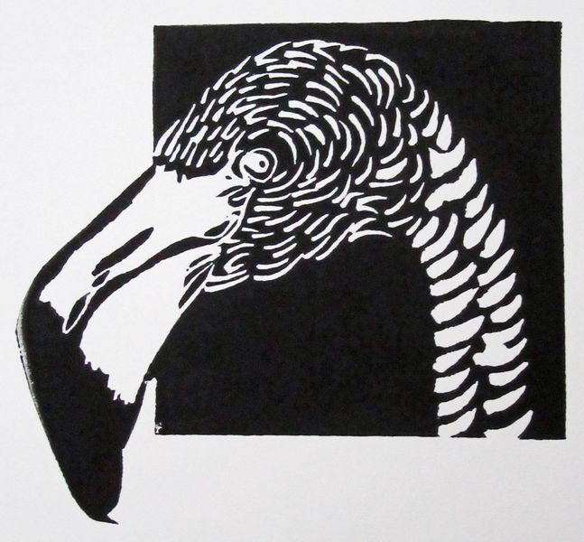 Linolcut, Druckgrafik, Flamingo, Linoldruck, Scwarz, Linolschnitt