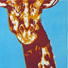 Kontrast, Druckgrafik, Afrika, Giraffe