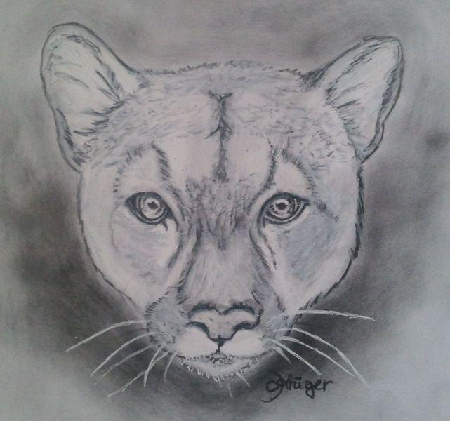 Pumakopf, Malerei