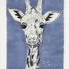 Inktober, Giraffe, Sabbernd, Illustrationen