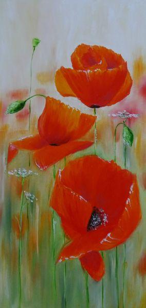 Feld, Ölfarben, Drei rote mohnblumen, Weisse scharfgarbe, Malerei, Mohn