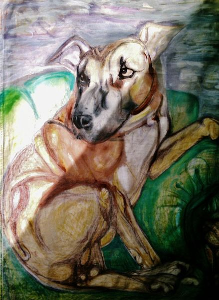 Critter, Hund, Malerei, Tiere