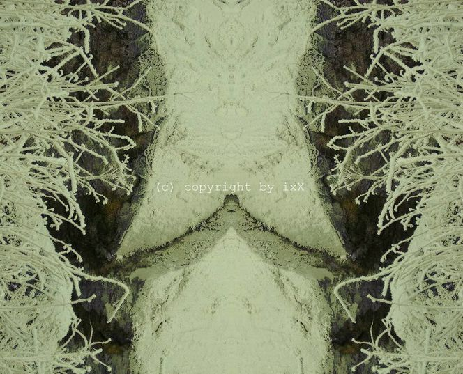 Natur, Digitale kunst, Muster, Verfremdung, Spiegelung, Farben