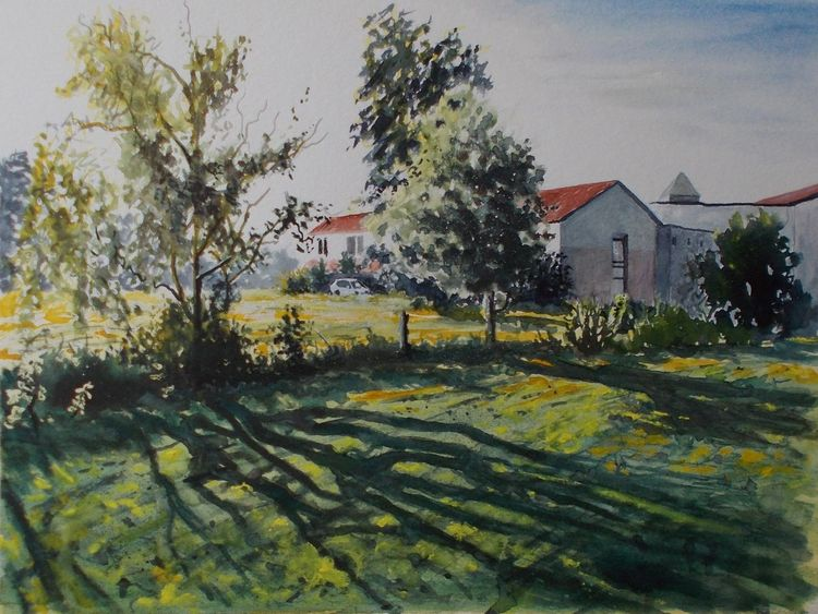 Feld, Weide, Altenheim, Gebäude, Abend, Natur