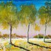Birken, Natur, Baum, Morgen