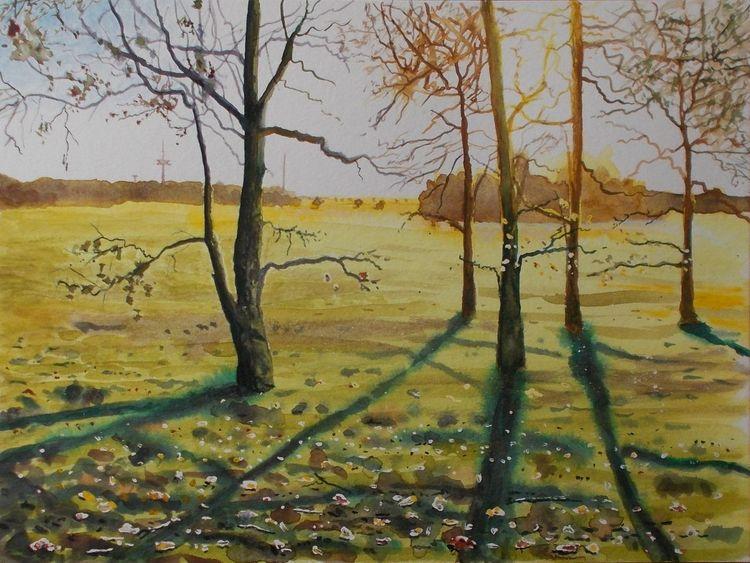 Wald, Waldrand, Abend, Herbst, Feld, Sonne