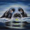 Labrador, Tierportrait, Pastellmalerei, Tierzeichnung