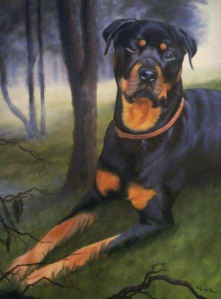Rottweiler, Haustier, Portrait, Hund, Tiere, Malerei