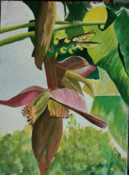 Aquarellmalerei, Russische aquarellfarben, Bananenstaude, Blüte, Pflanzen, Aquarell