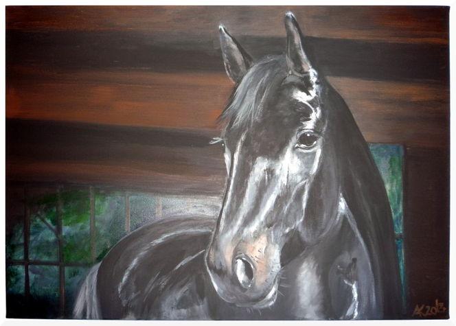 Pferde, Realismus, Hengst, Rappe, Licht, Schatten