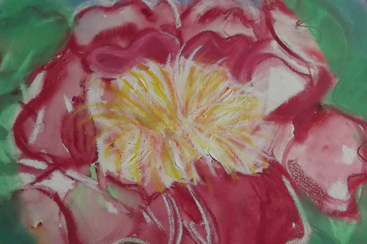 bild rose malerei pflanzen von solly bei kunstnet. Black Bedroom Furniture Sets. Home Design Ideas