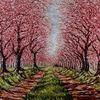 Altes land, Alt, Kirschblüten, Blühende allee