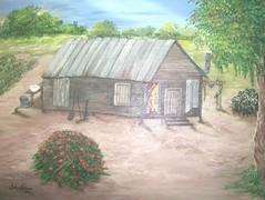 Bauernhof, Amerikanisch, Florida, Scheune, Geschichte, Afro