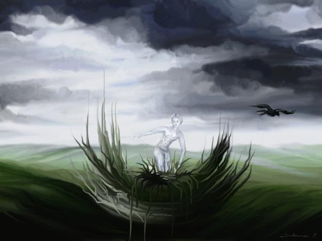 Himmel, Landschaft, Wolken, Junge, Vogel, Digitale kunst