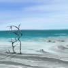 Urlaub, Himmel, Eden, Wasser