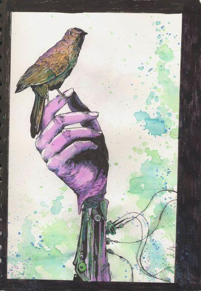 Hand, Kabel, Vogel, Zeichnungen