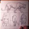 Rilke, Panther, Käfig, Zeichnungen