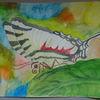 Zebraschwalbenschwanz, Blätter, Natur, Abstrakter hintergrund
