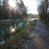 Herbst, Landschaft, Ludwigskanal, Baum