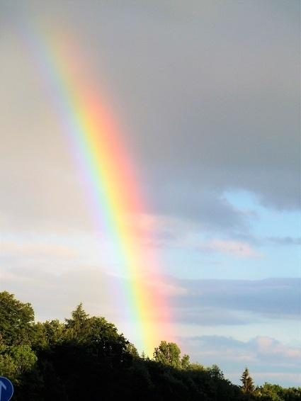 Himmel, Farben, Wetter, Regenbogen, Sommer, Wald