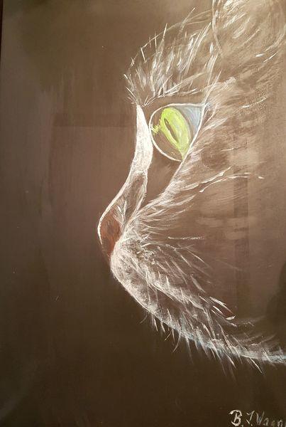 Treue, Geheimnis, Katze, Atmosphäre, Leuchten, Blick