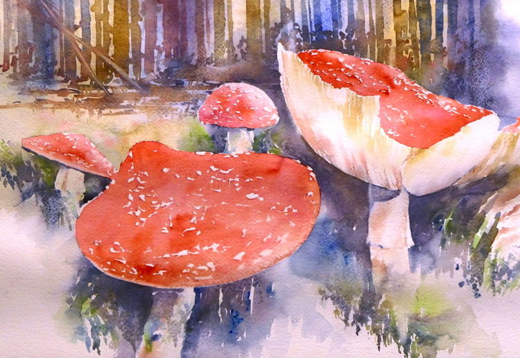 Fliegenpilz, Pilze, Aquarellmalerei, Aquarell, Herbst